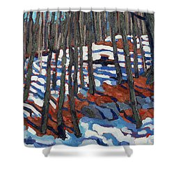 Original Homestead Shower Curtain by Phil Chadwick
