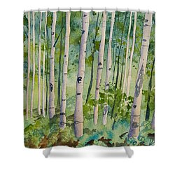 Shower Curtain featuring the painting Original Watercolor - Summer Aspen Forest by Cascade Colors