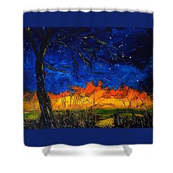 Orion                     14.2.13.2018 Shower Curtain