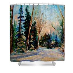 Ormstown Quebec Winter Road Shower Curtain by Carole Spandau