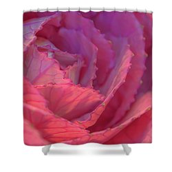 Ornamental Pink Shower Curtain by Roy McPeak