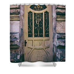 Ornamented Doors In Light Brown Color Shower Curtain by Jaroslaw Blaminsky