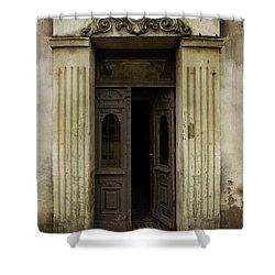 Ornamented Gate In Dark Brown Color Shower Curtain by Jaroslaw Blaminsky