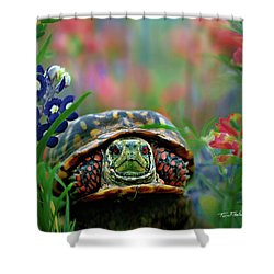Ornate Box Turtle Shower Curtain