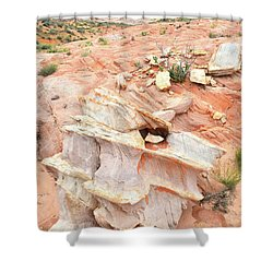 Shower Curtain featuring the photograph Ornate Rock In Wash 4 Of Valley Of Fire by Ray Mathis