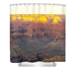 Oro Meseta Shower Curtain by Adam Cornelison