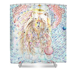 Oso Mayor Shower Curtain