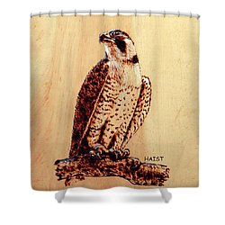 Osprey 2 Pillow/bag Shower Curtain
