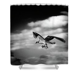 Shower Curtain featuring the photograph Osprey Catch Of The Day by Chrystal Mimbs