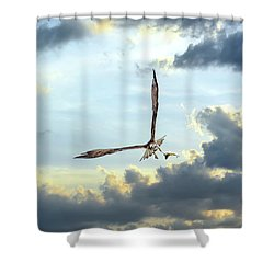Osprey Flying In Clouds At Sunset With Fish In Talons Shower Curtain