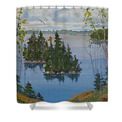 Osprey Island Study Shower Curtain