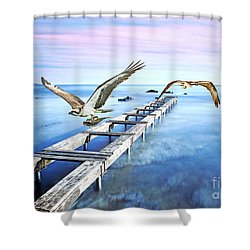 Osprey On The Move Shower Curtain