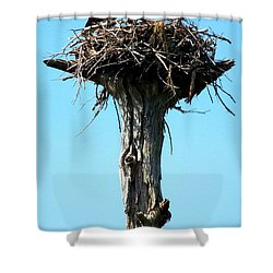 Osprey Point Shower Curtain by Karen Wiles