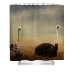 Ostrich Couple Shower Curtain by Jai Johnson
