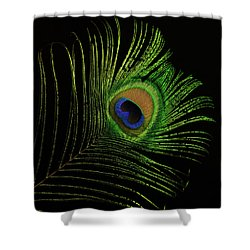 Ostrich Feather Tip Eye Shower Curtain