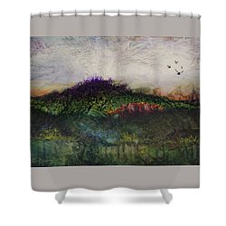 Shower Curtain featuring the painting Other World 1 by Ron Richard Baviello
