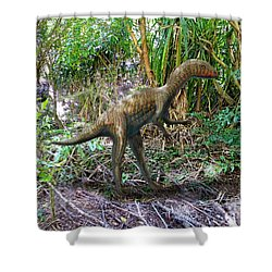 Othiniela In The Forest Shower Curtain by Frank Wilson