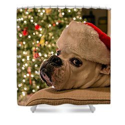 Otis Claus Shower Curtain