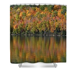 Ottawa National Forest Shower Curtain by Dan Hefle
