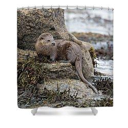 Otter Beside Loch Shower Curtain