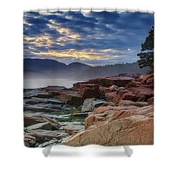 Otter Cove In The Mist Shower Curtain by Rick Berk