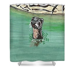 Otter In Amazon River Shower Curtain