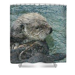 Otter Zen 2 Shower Curtain