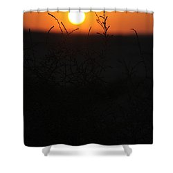 Our Growth Shower Curtain by Jez C Self