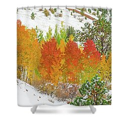 Our Winter Begins Around Mid October.  Shower Curtain