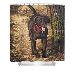Out For A Walk #1 Shower Curtain