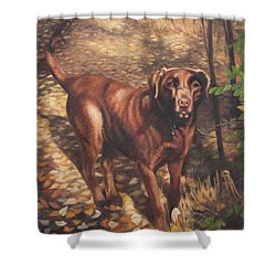 Out For A Walk #2 Shower Curtain