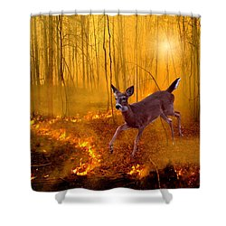 Out Of Egypt Shower Curtain by Bill Stephens