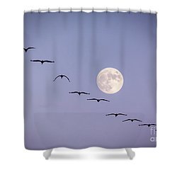 Out Of Sync Shower Curtain