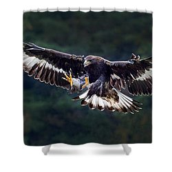Out Of The Forest Shower Curtain