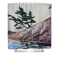 Out Of The Rock Shower Curtain