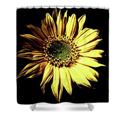 Out Of The Shadows Shower Curtain