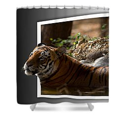 Out Of The World Shower Curtain by Ramabhadran Thirupattur