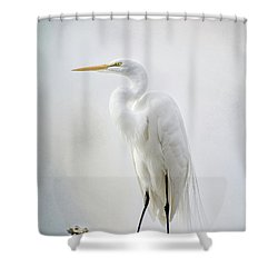 Out On A Limb Shower Curtain