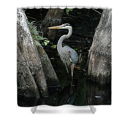 Out Standing In The Swamp Shower Curtain by Lamarre Labadie