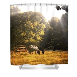 Shower Curtain featuring the photograph Out To Pasture by Mark Fuller
