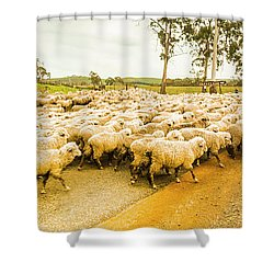 Outback Road Crossing Shower Curtain