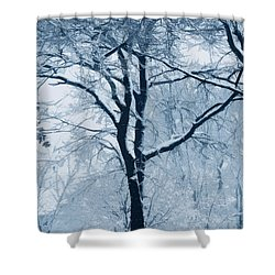 Outside My Window Shower Curtain by Linda Sannuti