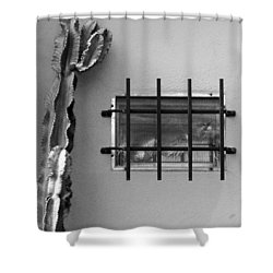 Outsiders - Cactus By The Window Shower Curtain by Ben and Raisa Gertsberg