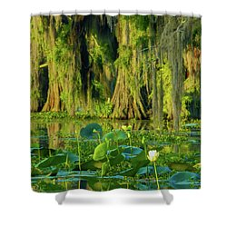 Outstanding Lotus Shower Curtain by Kimo Fernandez
