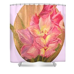 Oval Gladiolas               11x14 Shower Curtain by Sherril Porter