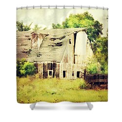 Shower Curtain featuring the photograph Over Grown by Julie Hamilton