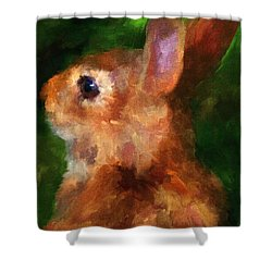 Over My Shoulder Shower Curtain by Jai Johnson