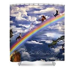 Over The Rainbow Bridge Shower Curtain