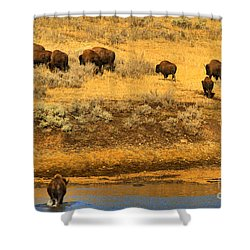 Shower Curtain featuring the photograph Over The River And Up The Hill by Adam Jewell