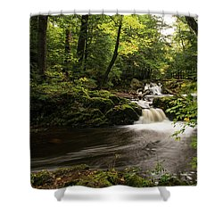 Overlooked Falls Shower Curtain